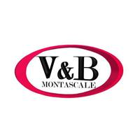 image of V&B Montascale ha partecipato a Pescara Senior City